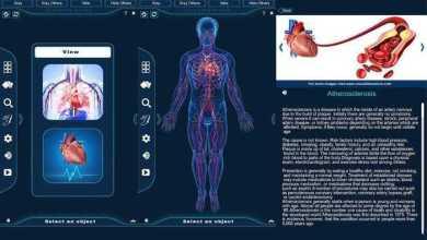 برنامج التركيب التشريحي للجهاز الدوري