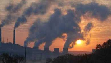 هل يُمكن أن يؤدي تلوث الهواء إلى العمى؟