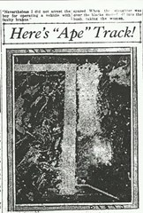 Footprint taken from the scene of the Ape Canyon attack.  Believed to be the earliest photograph of a Bigfoot (Sasquatch) track