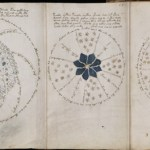 Page from the Voynich Manuscript