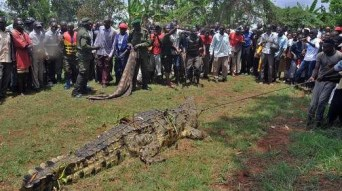 Over 100 people lined the shores of the lake to view the beast that had killed four of their villagers