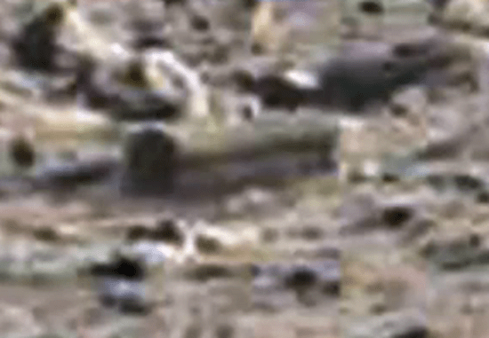 Coffin found on Mars