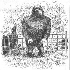 Eyewitness sketch of what the Minerva Monster Bigfoot creature looked like