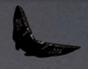 """Cropped photo of """"Butterfly-UFO"""" clearly shows the detailed structure of the craft"""