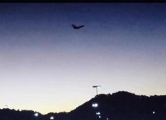 "Metallic ""Butterfly-UFO"" near New Boston, Ohio"