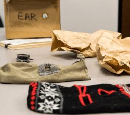 Evidence from the Golden State Killer crimes