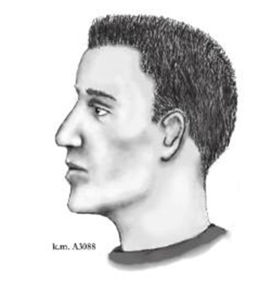 Police sketch of Phoenix serial street shooter thumb