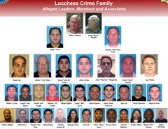 Lucchese crime family organization