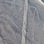 Nazca Lines - The whale