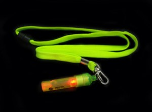 LED Light Up Whistle