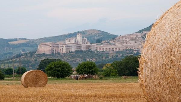 Paesaggio sei nuove aree iscritte nel registro nazionale dei paesaggi rurali storici