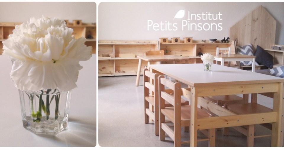 Institut-des petits -Pinsons