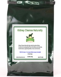Equine Kidney Flush