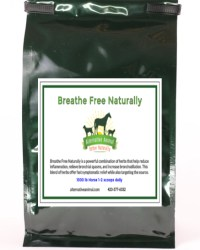 Natural respiratory support for horses