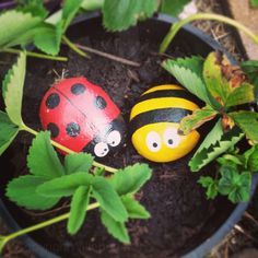 Open day at Blaise Community Garden – GET GROWING TRAIL