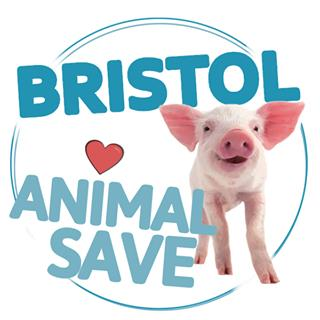 Talk by vegan activist Ed Winters (Earthling Ed) hosted by Bristol Animal Save