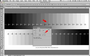Grey gamma on digital negatives 6b
