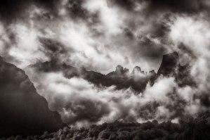 Carbon print by Sandy King.