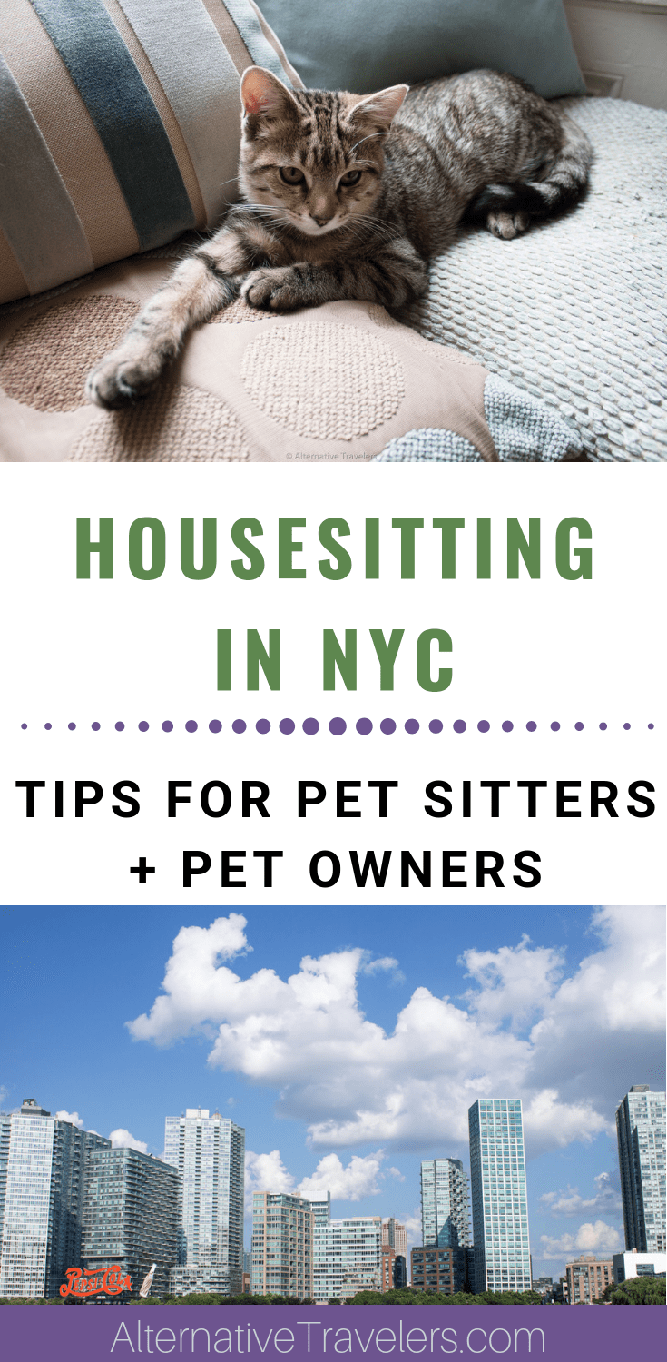 Want to house sit in NYC? House sitting in New York is very competitive, but with these tips in hand you'll be ready to put your best foot forward! For pet owners living in New York, we've also got you covered - click to learn more about exchange-based pet sitting and how to get a house sitter for free while you travel!  #Housesitting #nyc #budgettravel #housesittingnyc #petsitting #catsitting #dogsitting