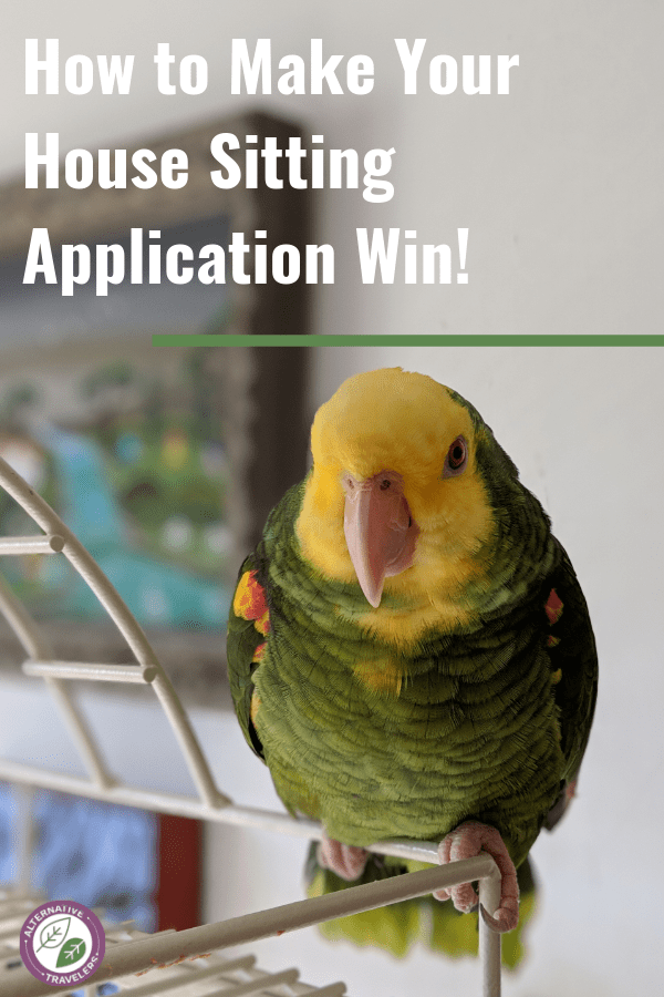 House sitting tips for landing that perfect house sitting jobs! Make your house sitting application win with these 5 tips. Travel the world for free! #Housesitting #budgettravel