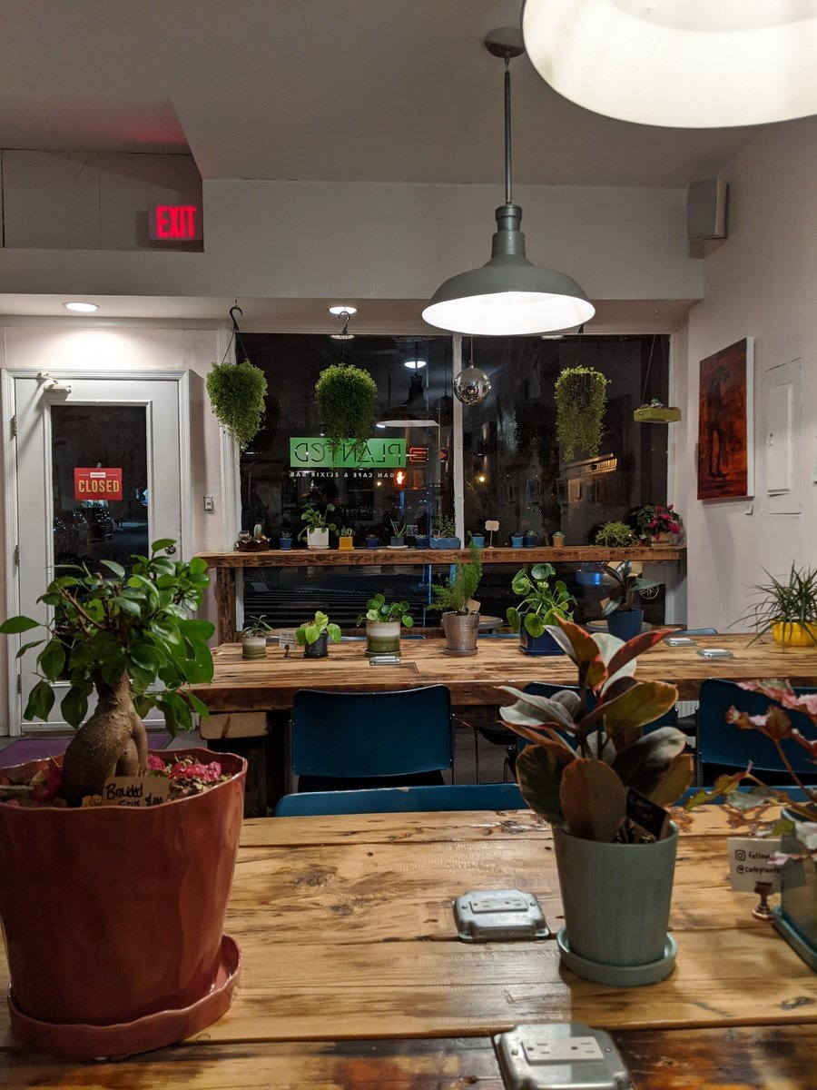 Planted Cafe interior