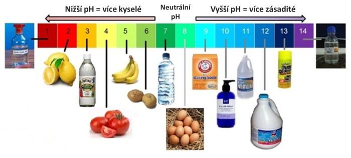 Kyselost zasaditost potraviny
