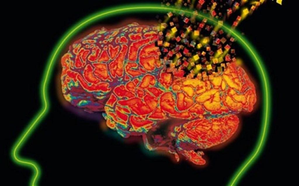 mozek-destrukce