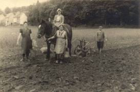 Kartoffelernte in der Au von links: Luise Junior, Marianne Junior, Gertrud Linzenbach, ?