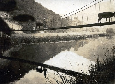Heimweg nach dem Kühe hüten über die Hängebrücke um 1926
