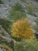 Mini Lac Autier 091010 Altiplus (2)
