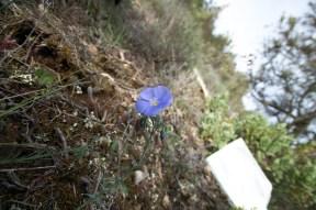 2012-04-28-Pont_Ponadieu-USC_Drap-IMG_8670-la