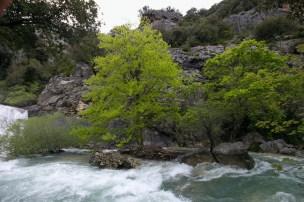 2012-05-01-Ponadieu_et_cascade_Pare-Altiplus-IMG_8724-la