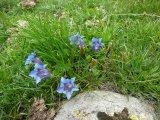 2014-06-18-Altiplus-Lac_de_Prals-Photos_Kristina-07