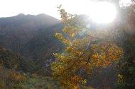 2014-11-23-Altiplus-Clans_Ste_Anne-IMG_7602