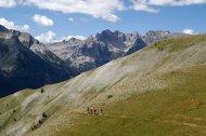 2015-08-02-Altiplus-Tete_de_Vinaigre-IMG_0380