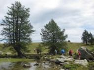 2015-08-24-Altiplus-Lac_Grenouilles-IMG_4196