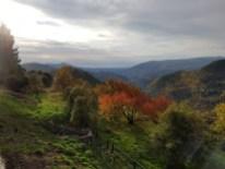 Mont Vial - Club randonnée 06 - Altiplus - 27