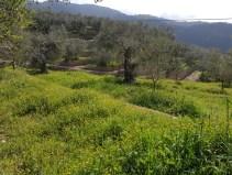 randonnée village perchés ligure