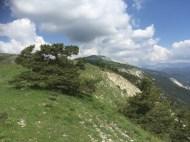 Altiplus 24 juin 2018 Puy de Rent (6)