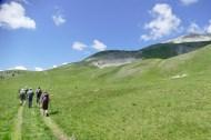 prairies alpines
