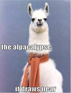 Alpacalypse2