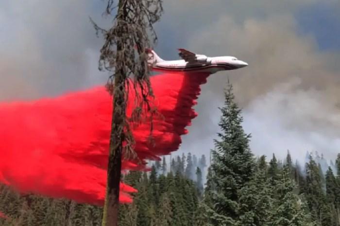 Impressionnantes images des bombardiers d'eau sur l'incendie de Séquoia Park !