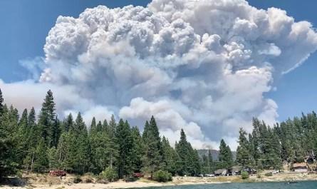 incendies de californie