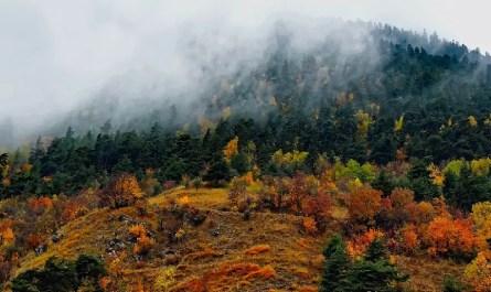 automne en montagne