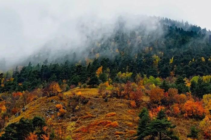 5 bonnes raisons pour passer un week-end d'automne à la montagne !