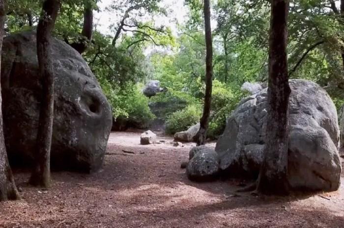 Le fils de Robert Paragot lui rend hommage à Fontainebleau