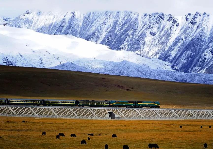 Train Lhassa