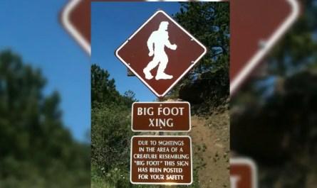big-foot yéti