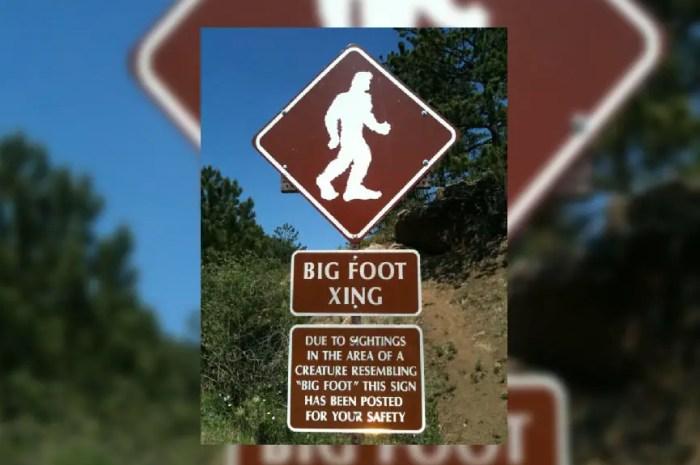 La chasse au yéti bientôt règlementée ? Et ce n'est pas une blague !