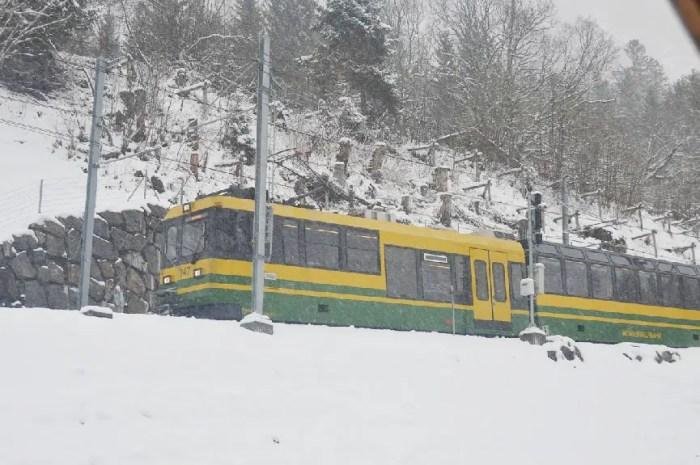 Un train à crémaillère pour desservir des stations de ski américaines ?